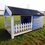 miniature-pig-house
